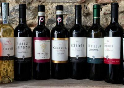 San Fabiano Calcinaia - I nostri vini - Our wines - Chianti shop online - Tuscany wines